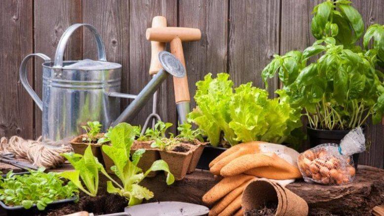 Pyssla i trädgården